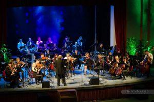 orkestar impresija foto radule perisic
