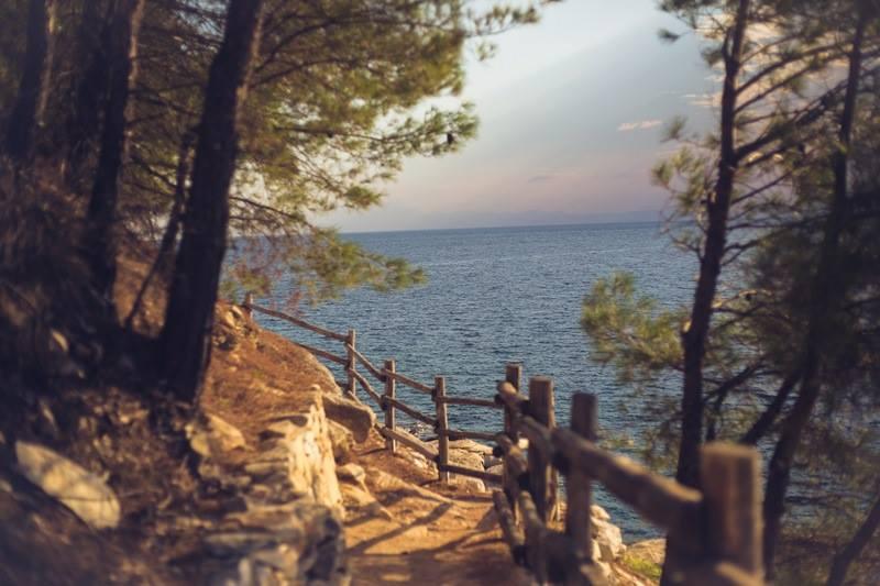 Pešačka staza Foto: Tijana Matejić