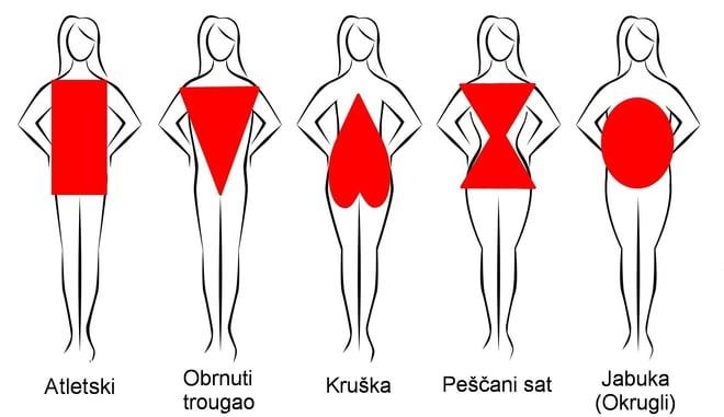 tipovi-gradje-tela-oblik-tela.jpg