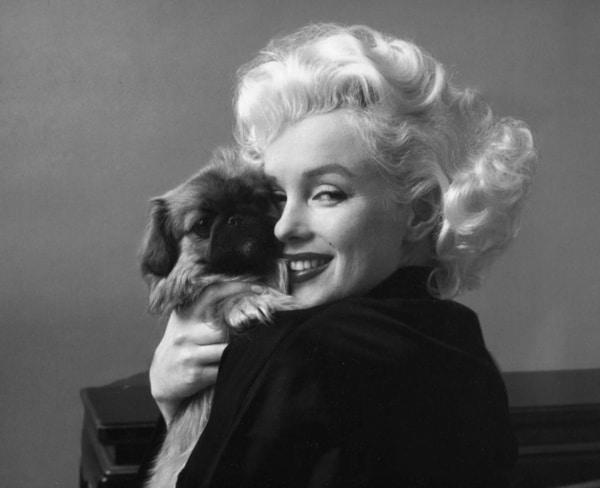 15 citata o samopouzdanju, životu i ljudima: Marilyn Monroe