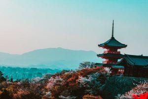 japan viza bezbednost foto pexels